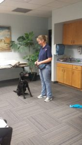 """Katleen and dog getting ready to """"work"""" the room."""